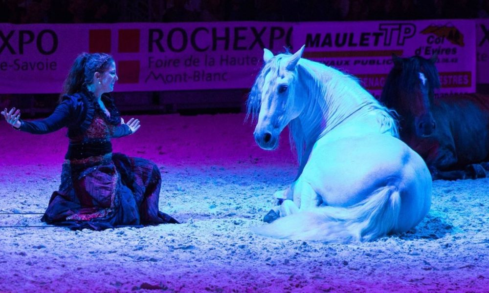 Animation cheval salon equid espaces